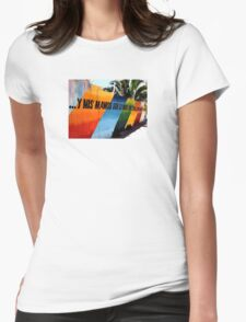 valparaiso coloured fence Womens Fitted T-Shirt