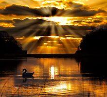 Xmas Sunrise by Trevor Murphy