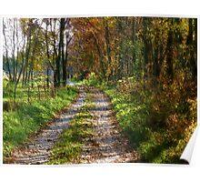 Autumnwood Lane Poster