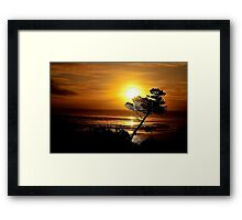 LEANING TREE SILHOUETTE Framed Print