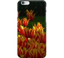 On Fire! iPhone Case/Skin