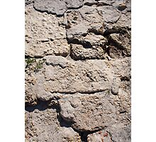 The stones from the limestone closeup Photographic Print