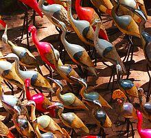 Phalacrocorax carbo bird in Nairobi, Kenya by Atanas Bozhikov Nasko