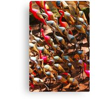 Phalacrocorax carbo bird in Nairobi, Kenya Canvas Print