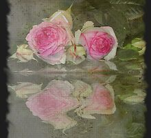 Rose card    3       by julie anne  grattan