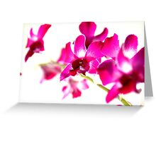 Color of the year Greeting Card