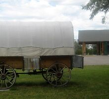 Historic Old Wagon Side View. by Maureen Dodd