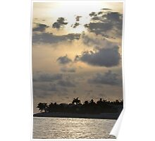 Palm Trees & Sunset Poster