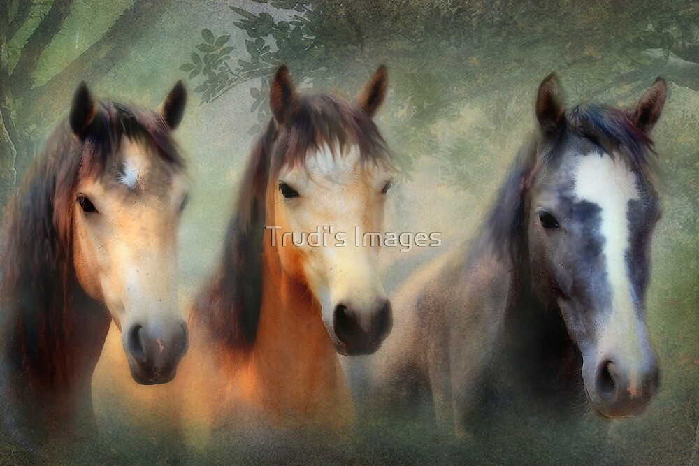 Three of Hearts by Trudi's Images