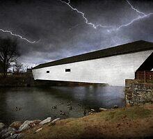 Doe River Crossing by Christine Annas