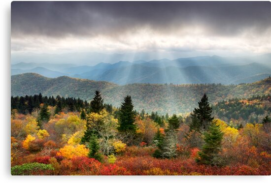 Blue Ridge Parkway Photography - Enlightenment by Dave Allen