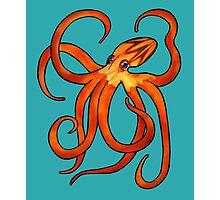 Orange Octopus Photographic Print