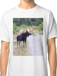 Bull Maine Moose Classic T-Shirt