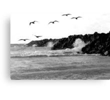 when life crashes around us, we can still fly Canvas Print