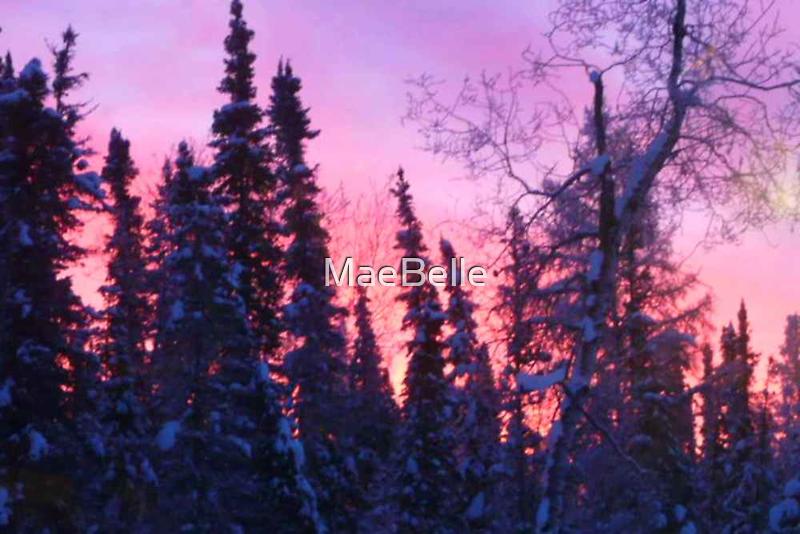 Sunrise Christmas Morning 2010 by MaeBelle