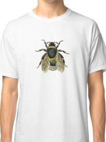 antique typographic vintage honey bee Classic T-Shirt