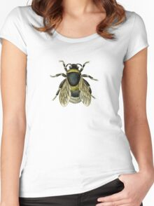 antique typographic vintage honey bee Women's Fitted Scoop T-Shirt
