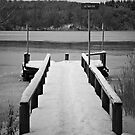 The bridge and the frozen lake. by henrikn