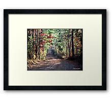 Going Home - Dirt road in Cass County, Texas Framed Print