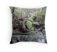 LANDSCAPE IN LATE MORNING. Throw Pillow