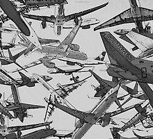 CROWDED SKIES by Paul Quixote Alleyne