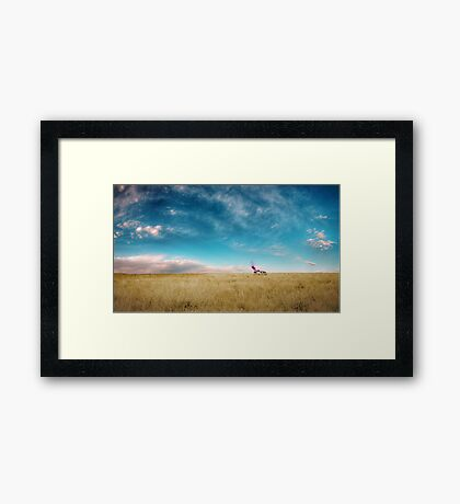 Breaking Bad Desert  Framed Print