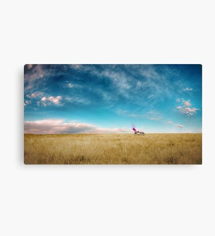 Breaking Bad Desert  Canvas Print