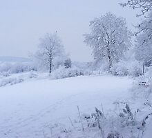 WINTER SCENE by DAVE SNEYD