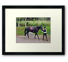 Equine Education Framed Print