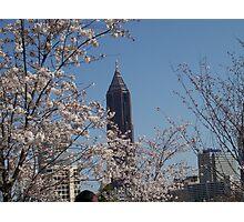 Atlanta in Spring Photographic Print