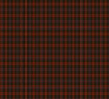 00003 Brown or Grady Clan/Family Tartan  by Detnecs2013
