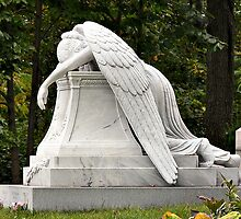 Weeping Angel by PhotosByHealy