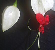 Love Heart by Virginia McGowan