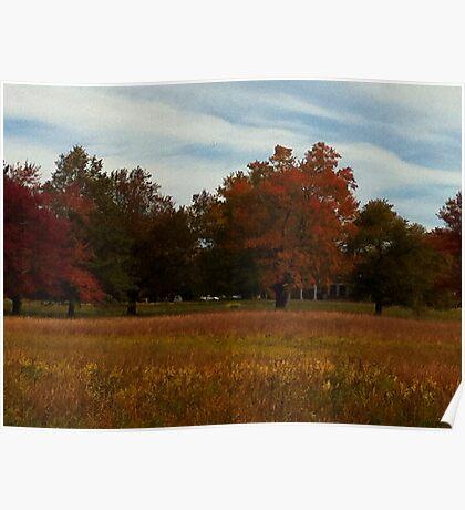 Fall Foliage at Waveny Poster