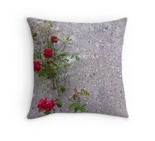 Red Roses On Grey Throw Pillow