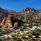 Gate's Pass - Tucson, Arizona by Angela Pritchard