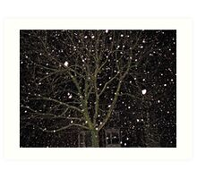 Falling Snow - Night Scene Art Print