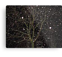 Falling Snow - Night Scene Metal Print