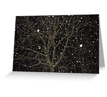 Falling Snow - Night Scene Greeting Card