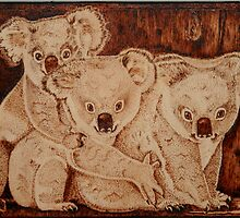 Three Baby Koalas by aussiebushstick