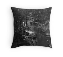 The Gorge Under Noccalula Falls Throw Pillow
