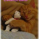 Sweetdreams by Angie O'Connor