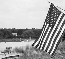 American Flag- Summer in B&W by Laura Cardello