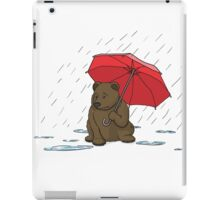 Drizzly Bear iPad Case/Skin