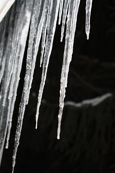 Icicles at Night- Wonder Lake, IL by nielsenca13