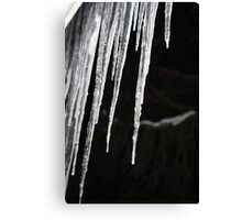 Icicles at Night- Wonder Lake, IL Canvas Print