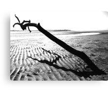 Monochrome Seascape Canvas Print