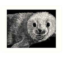 black and white seal on scratchboard Art Print