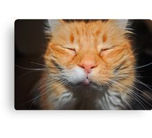 Even Cats Close Their Eyes When Having Their Picture Taken Canvas Print