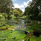 - River Brett at Chelsworth by Christopher Cullen